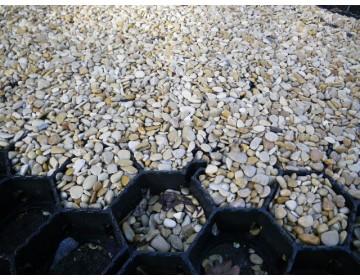 Gras- / grindplaten 40x40 cm